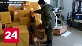 Челябинские таможенники изъяли партию поддельных духов - Россия 24