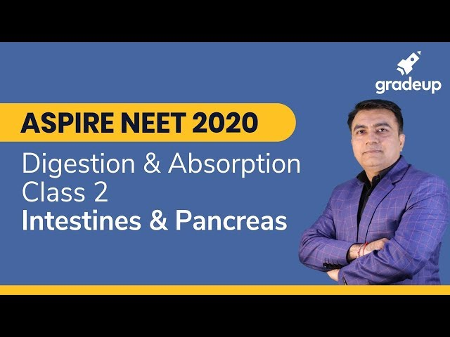 Aspire NEET 2020 | Digestion and Absorption Class 2 - Intestine, Pancreas