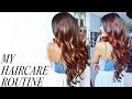 My Haircare Routine | Larissa DSa 💁🏻💇🏻