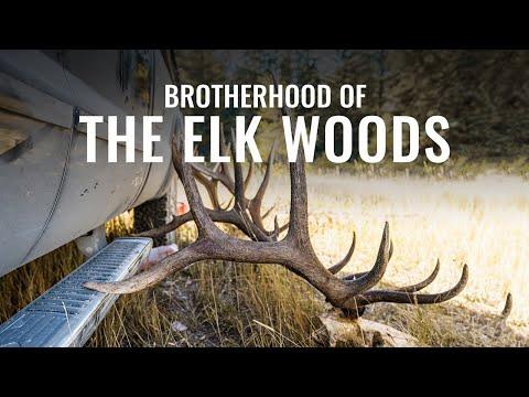 BROTHERHOOD OF THE ELK WOODS - A Wyoming Archery Elk Hunt