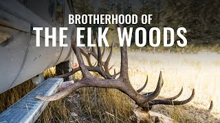 BROTHERHOOD OF THE ELK WOODS - A Wyoming Archery Elk Hunt