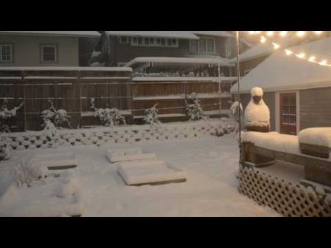 Time-lapse of record snowfall in Northeast Portland backyard