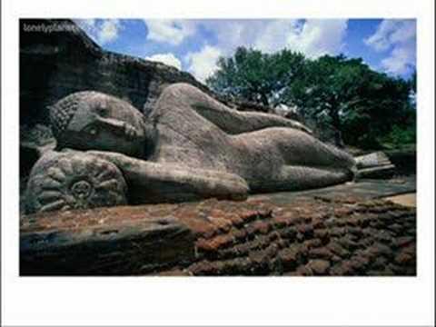 My Buddha Mind Body Spirit & The Ultimate Om