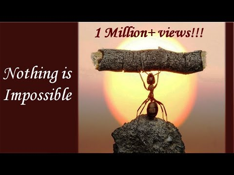 Never Give up, motivational /inspirational Story by Sandeep Maheswari, Nothing is Impossible