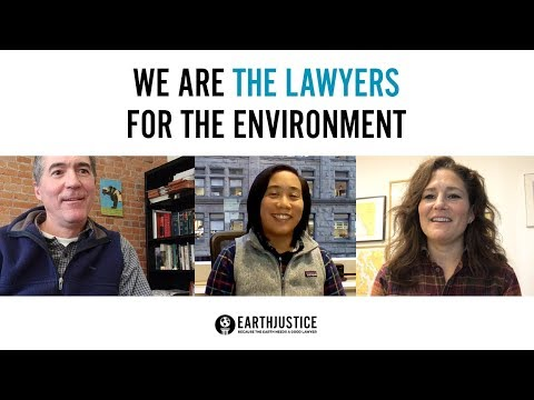 We Are The Lawyers For The Environment