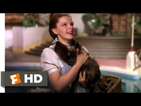 We're Not in Kansas Anymore - The Wizard of Oz (2/8) Movie CLIP (1939) HD