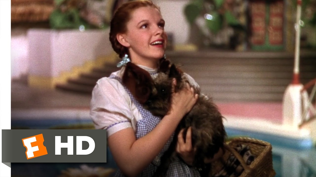 Were Not In Kansas Anymore The Wizard Of Oz 28 Movie Clip