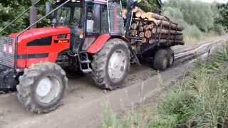 Zrywka drewna Belarus 1221 + przyczepa z napędem 4x4 (2)
