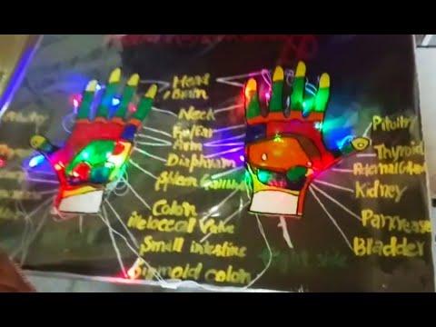 Science school project model (Idea),Hand Reflexology working model idea, meaning, benefits