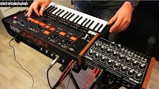 KORG ARP ODYSSEY Synthesizer (2015) - cv/gate sequenced