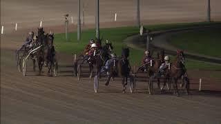 Vidéo de la course PMU PRIX AERES HOGESCHOOL DRONTEN