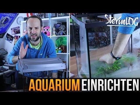 heimwerk tipps aquarium richtig einrichten doovi. Black Bedroom Furniture Sets. Home Design Ideas