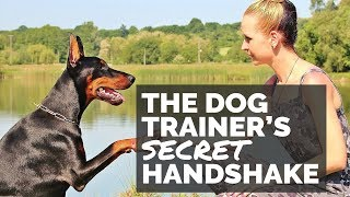 The Dog Trainer's Secret Handshake
