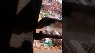 Download Video HEBOH.....!!!!!! Perselingkuhan janda semok dengan tukang bakso MP3 3GP MP4