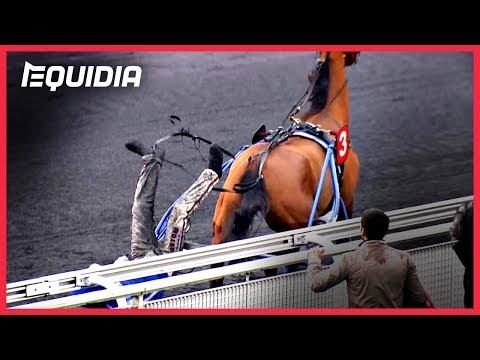 CHUTE DE SULKY ! | Le Zap Equidia | Février 2018