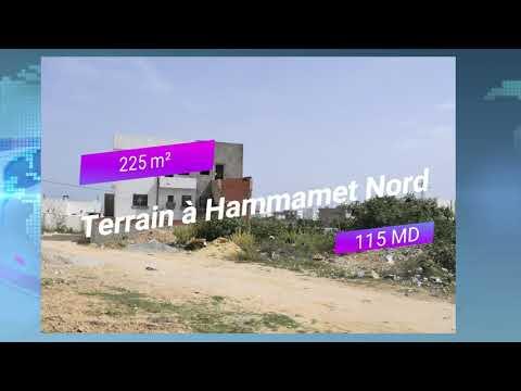 News Casa Imed Hammamet 05/07/2019