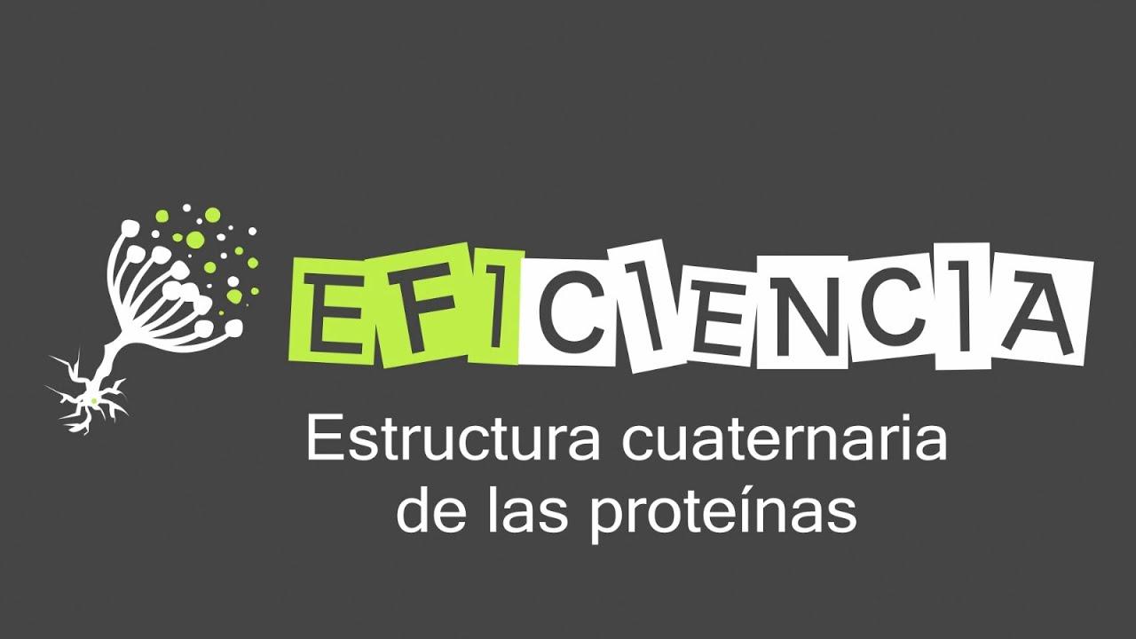 Estructura Cuaternaria De Las Proteínas Protómeros Dímeros Trímeros