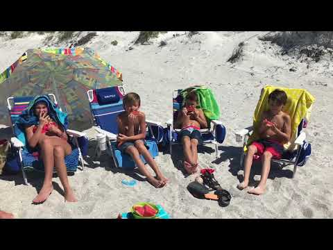 Happy Travel Adventures - Indian Rocks Beach Florida