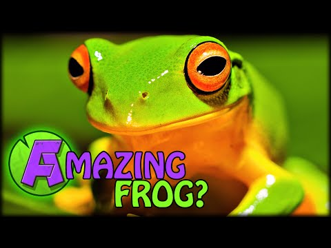The amazing frog free download games