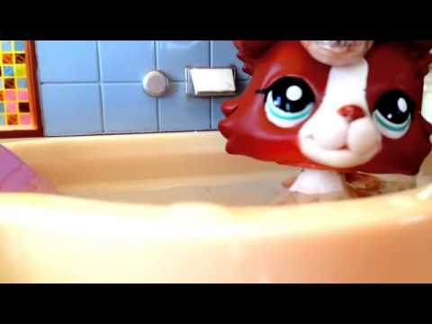 Littlest Pet Shop: Shower  Music  Happy 4th Of July