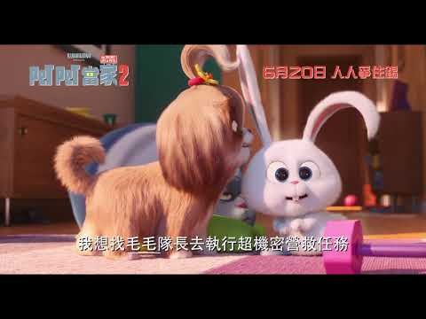 Pet Pet當家 2 (英語版) (The Secret Life of Pets 2)電影預告