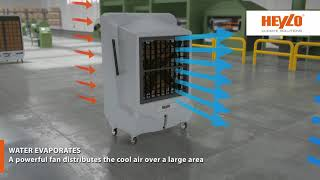 Industrial air coolers [Heylo]: Innovative and cost-effective cooling technology