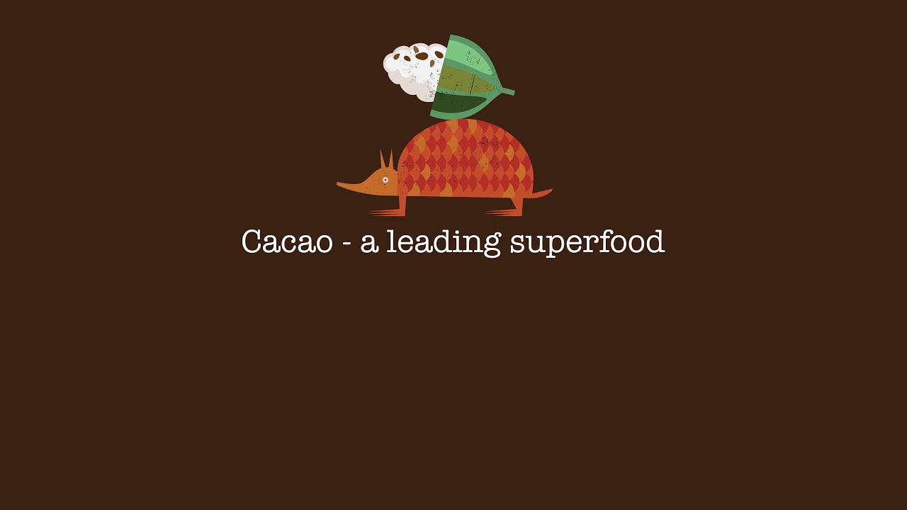 Cacao - a leading superfood