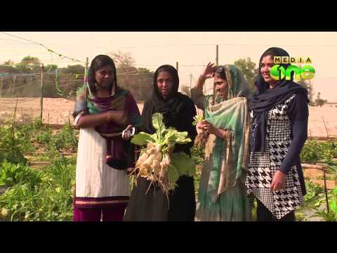 Companionship of malayalee housewives started farming in Qatar