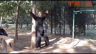 Learn Real Kung Fu---- Baji Quan Training Free Lesson For You