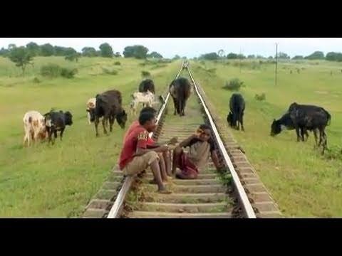 Destination Malawi - Volunteer in Africa