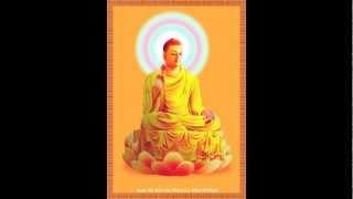 Kinh Sám Hối Hồng Danh Hồng Danh (89 Đức Phật)-Thầy Thích Trí Thoát tụng