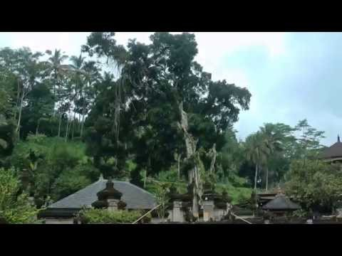 Bali: Daytrip with Ketut Lenju. Ricefields (Tegalalang), Batur volcano and Tirtha Empul temple.