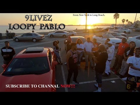 9LIVEZ LOOPY PABLO