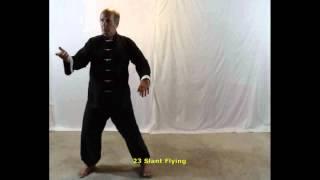 Agenda 6: Fist Under Elbow, Repulse the Monkey & Slant Flying