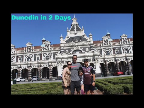 Dunedin in two days  - South Island Holiday Part 6