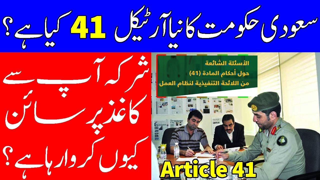 المادة 41