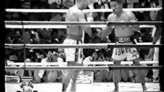 Gambar cover Ramon Dekkers vs Thai highlight 2014