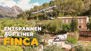 In the PARADISE of a FINCA & involuntary CHANGE OF PLANS | Van Life Mallorca | #07