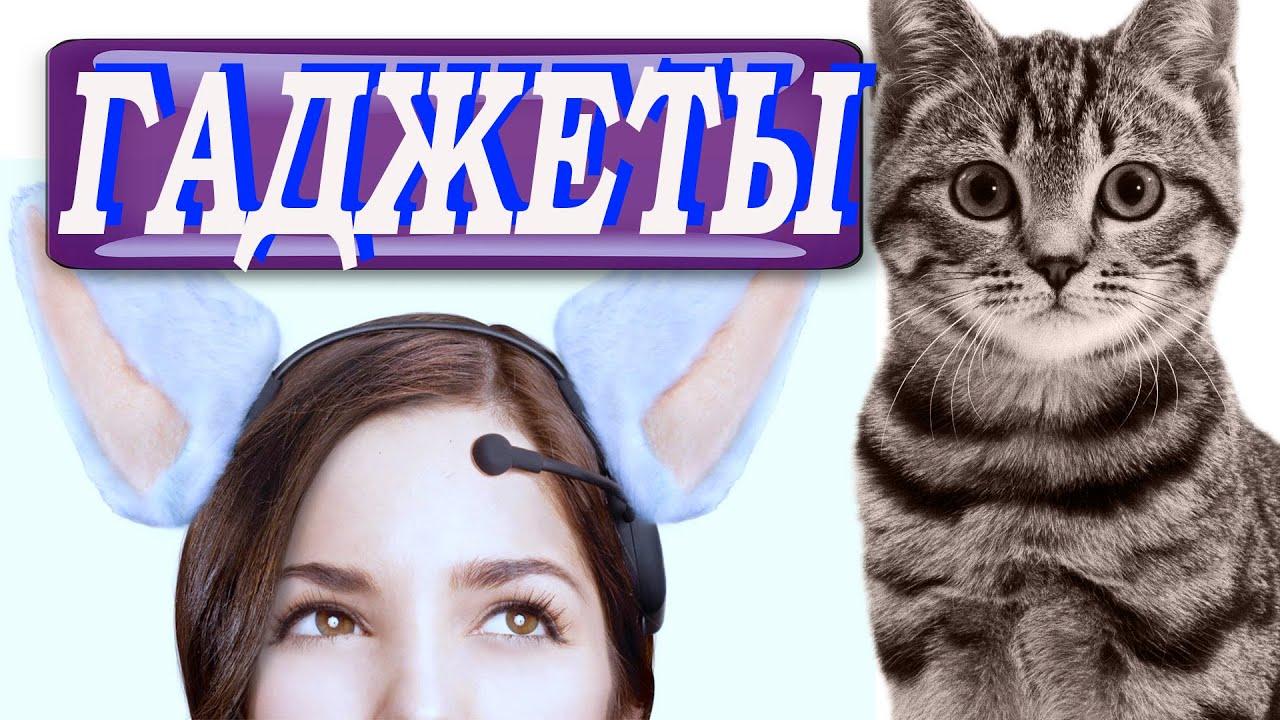 Алиэкспресс  с кошками