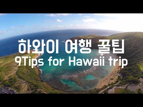 [하와이여행꿀팁] 안보면후회할걸~ 하와이 맛집,명소 및 꿀팁