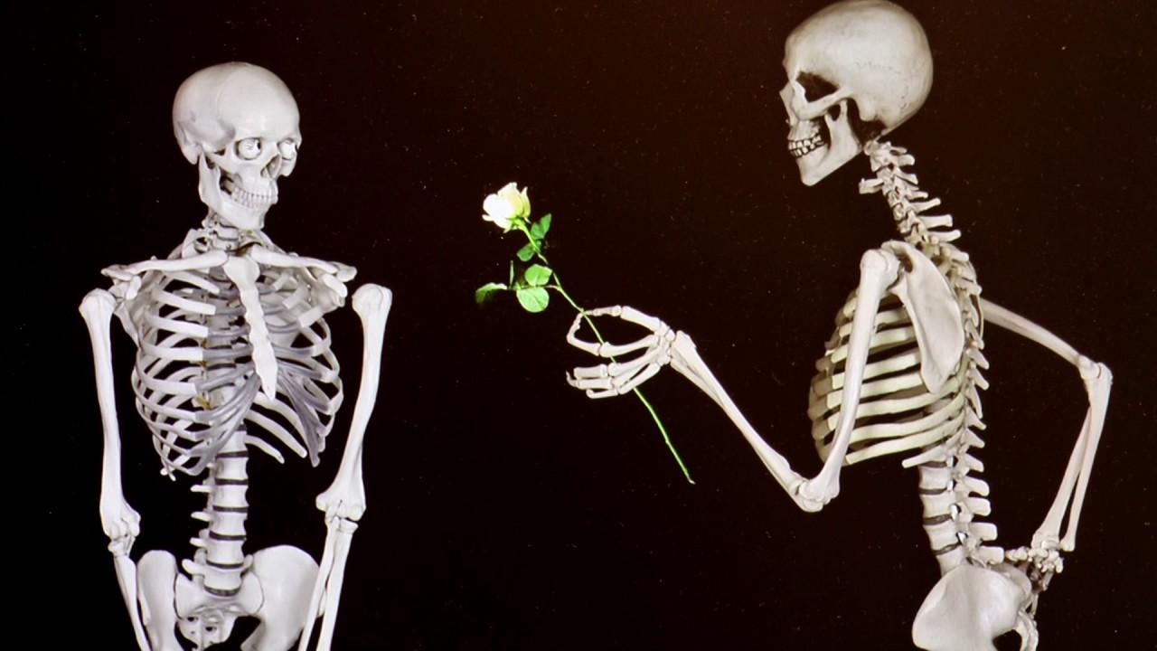Skelett - YouTube