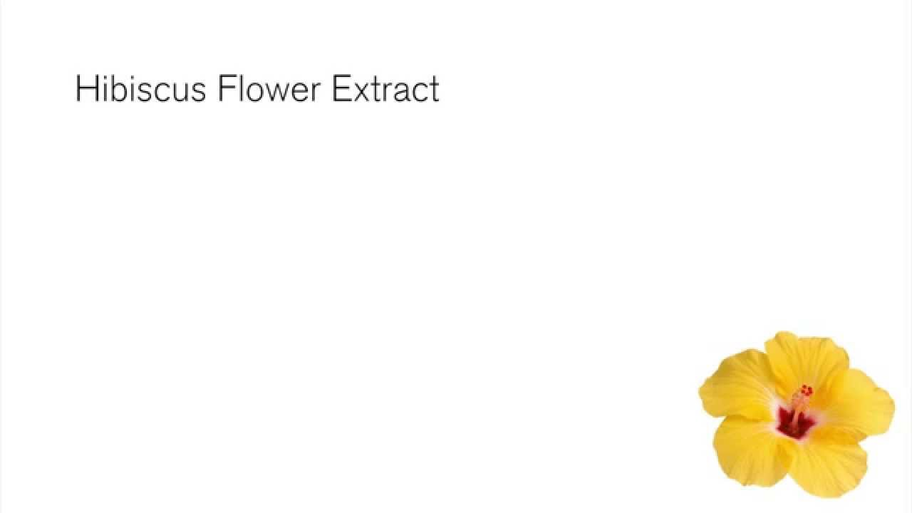 Benefits Of Hibiscus Flower Extract Green People Ingredients Youtube
