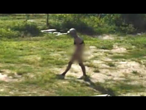 SHROOM - Do You Recognize This Naked Man Burglarizing Cars? [Video]