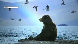 Выставка картин дикой природы России проходит в Якутске