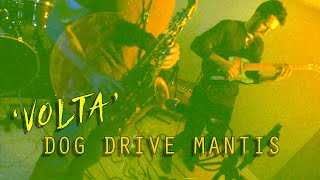 Dog Drive Mantis - Volta
