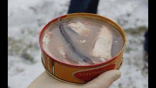 为什么鲱鱼罐头那么难吃,味道又那么臭,每年还大量生产呢?