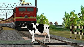 Crazy Buffalo STOPS the Train and escapes Indian Railways in indian train simulator