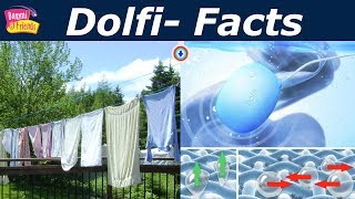 Amazing Facts About Dolfi With Bommi | டோல்ப்பி  Bommi World Wide Facts