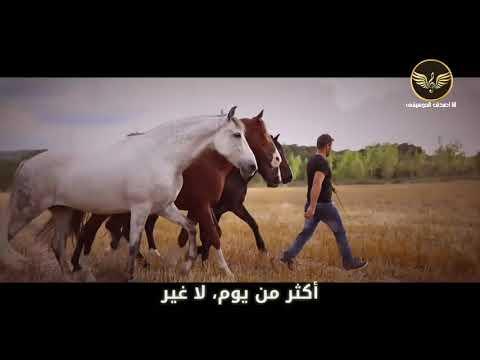 فيلم law abiding citizen مترجم عربي