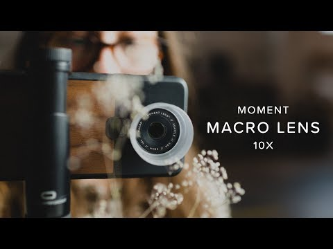 The BEST Macro Lens For Your Phone | Moment Macro Lens